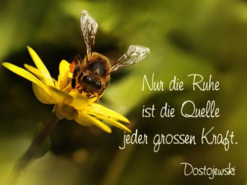 Frühlingsgedichte Kurze Und Lange Gedichte Zum Frühling