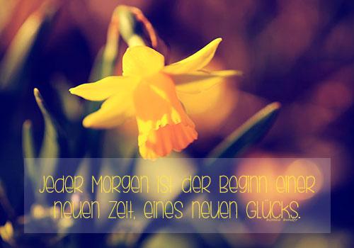 Sprüche blume Blumen —