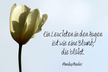 Moderne Gedichte   Lyrik   Sprüche und Zitate