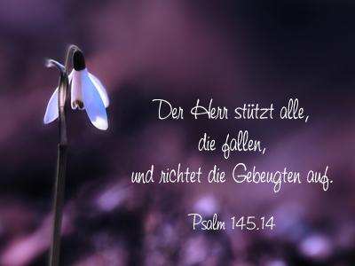 Ostersprüche Kurze Gedichte Und Zitate Ostern Lustige