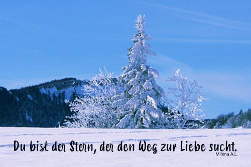 Christbaum Weihnachtsgedichte